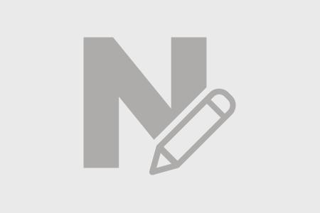 Giới thiệu về Ngayngay.com